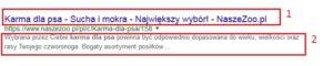 tytuł i opis w Google